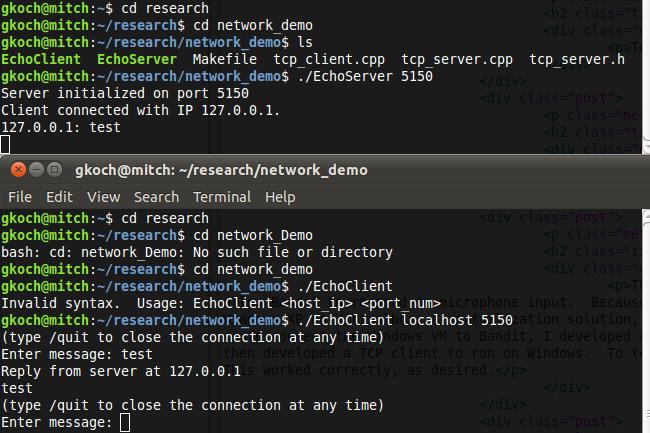 TCP Echo Client/Server Demo on Ubuntu